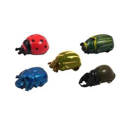 Pull Back Beetle - Pack of 42