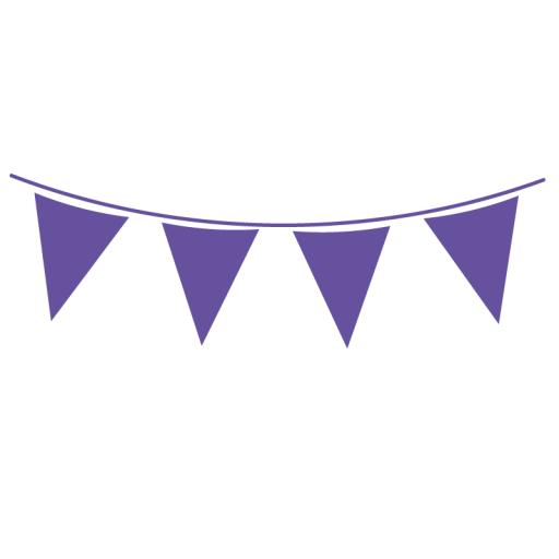 Purple Flag Banner